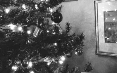 Home for the Holidays: Senior Celebrations